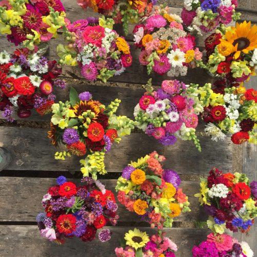 winderberry-greenhouse-flowers-09